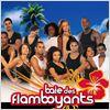 DPStream Baie des Flamboyants - Série TV - Streaming - Télécharger poster .5