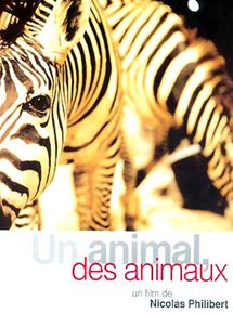 Un animal, des animaux streaming