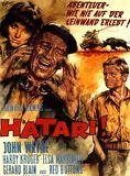 Hatari! streaming