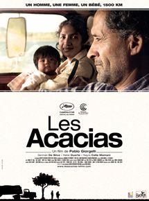 Les Acacias