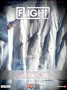The Art of Flight 3D streaming