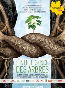 L'Intelligence des Arbres streaming