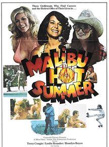 voir Malibu Hot Summer streaming