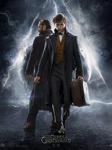 Les Animaux fantastiques - Les crimes de Grindelwald Teaser VO
