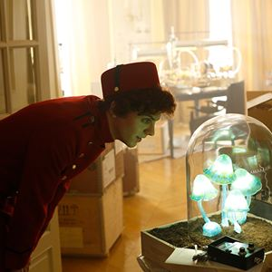Les Aventures de Spirou et Fantasio : Photo Thomas Solivérès