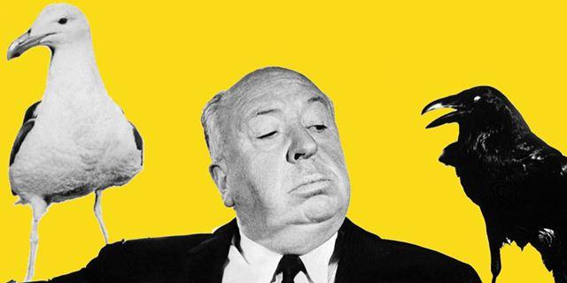 Sueurs froides et Fenêtre sur cour d'Alfred Hitchcock bientôt adaptés en séries ?