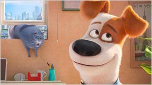 Comme des bêtes : rencontre avec les réalisateurs Chris Renaud et Yarrow Cheney