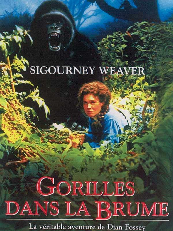 GORILLES DANS LA BRUME (1988) - Film en Français