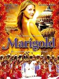 Marigold Streaming VF Gratuit