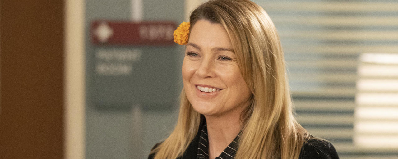 Grey's Anatomy saison 15 - quel est le meilleur prétendant pour Meredith : Link ou DeLuca ? [SONDAGE]