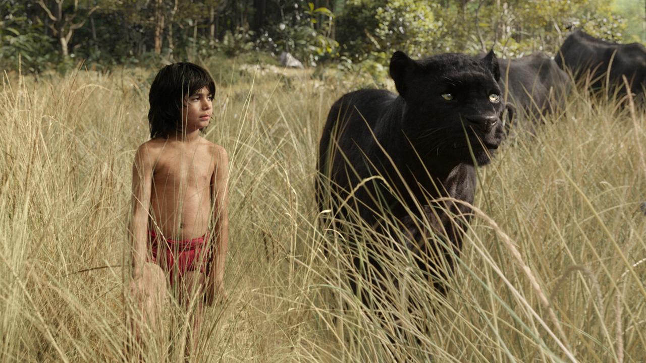 Disney Plus : La Belle et le Clochard, Le Livre de la jungle... 9 remakes live à voir pendant le confinement
