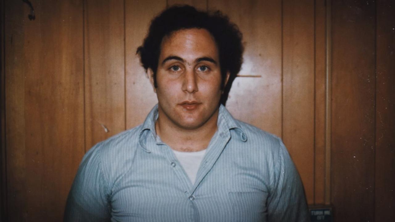 Les Fils de Sam sur Netflix : c'est quoi ce docu-série sur le célèbre serial killer de New York ?