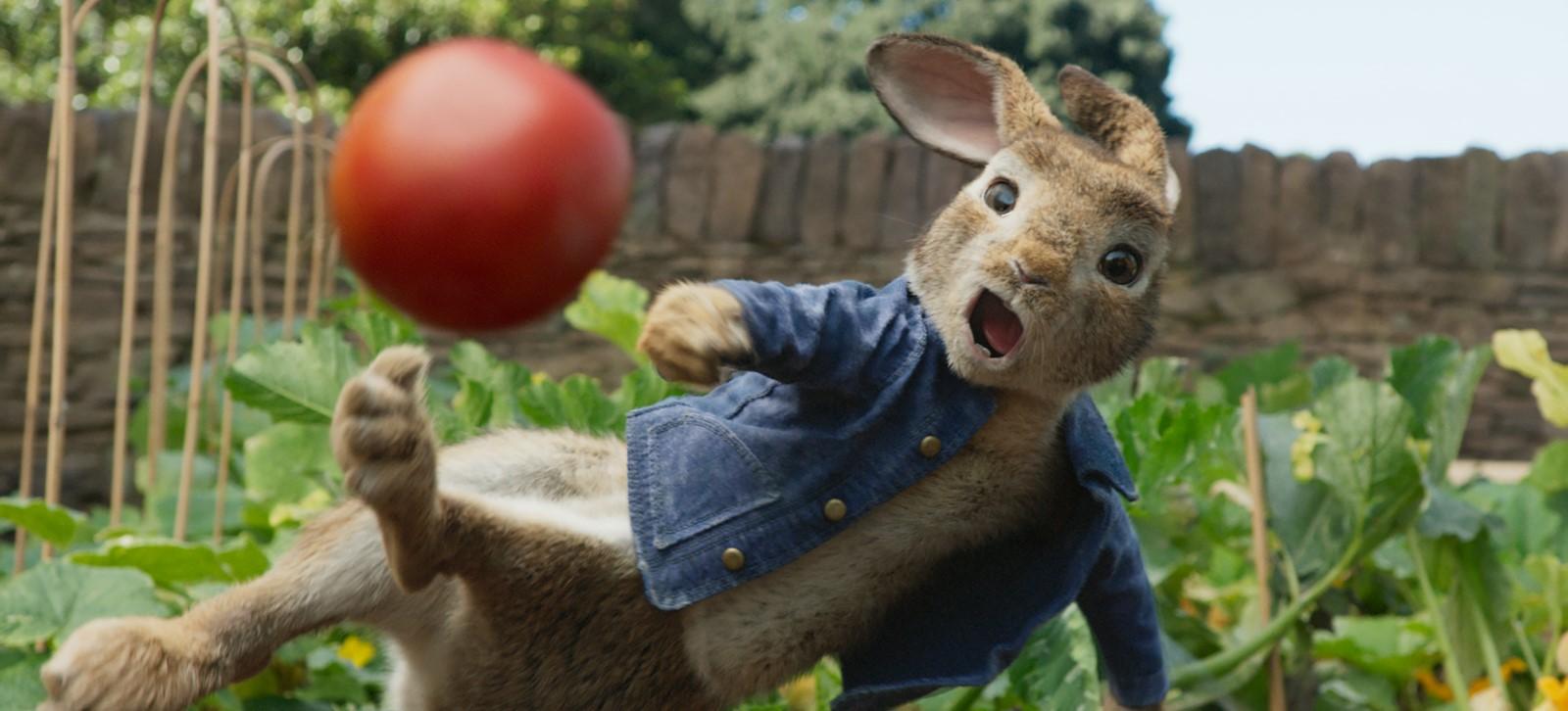 Descargar Peter Rabbit