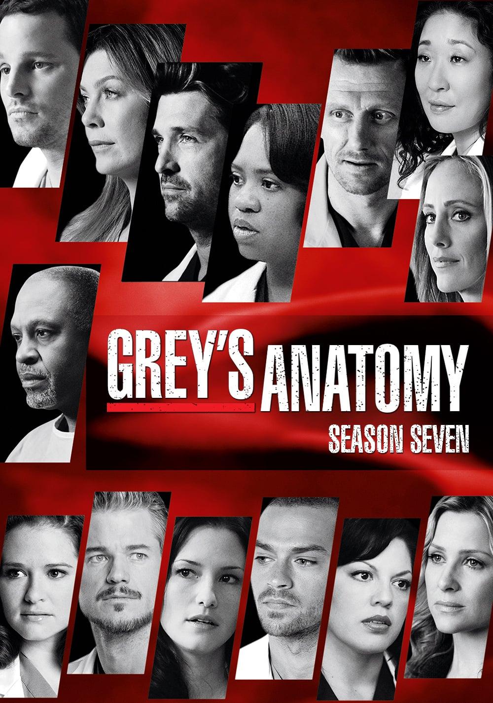 Greys Anatomy Saison 7 Allocin