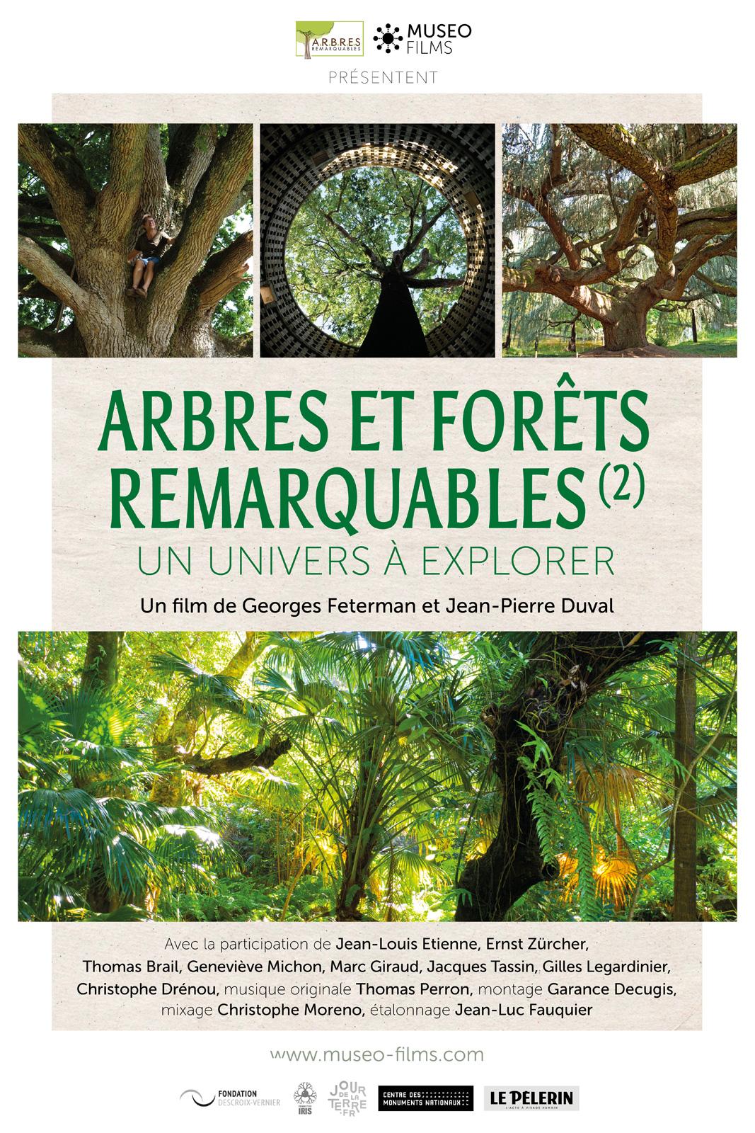 Arbres et forêts Remarquables, un univers à explorer