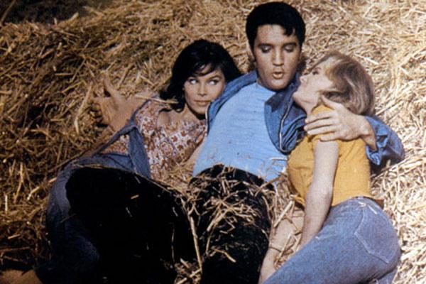 Salut les cousins ! : Photo Elvis Presley, Gene Nelson