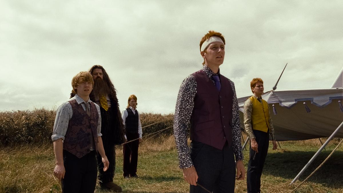Harry Potter et les reliques de la mort - partie 1 : Photo Domhnall Gleeson, James Phelps, Oliver Phelps, Robbie Coltrane, Rupert Grint