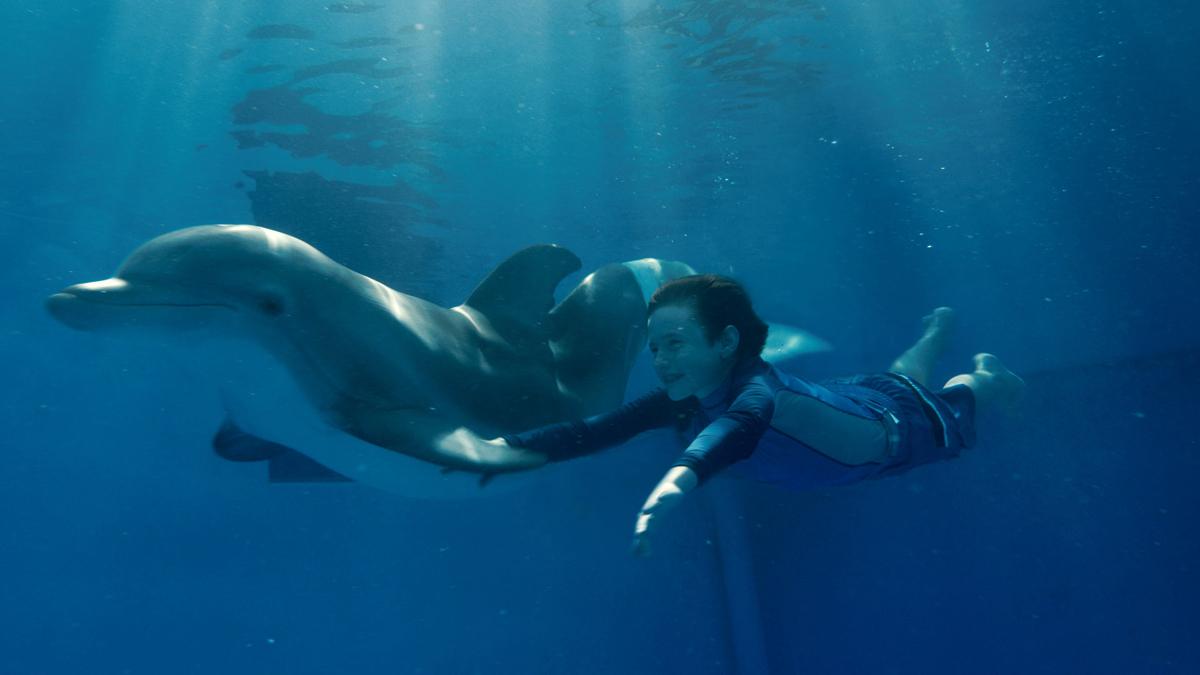 L'Incroyable histoire de Winter le dauphin : Photo Charles Martin Smith