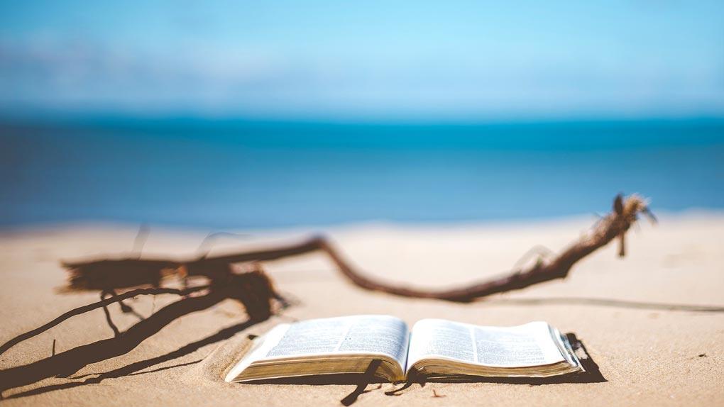 Quel(s) livre(s) emporter avec vous pour les vacances ?
