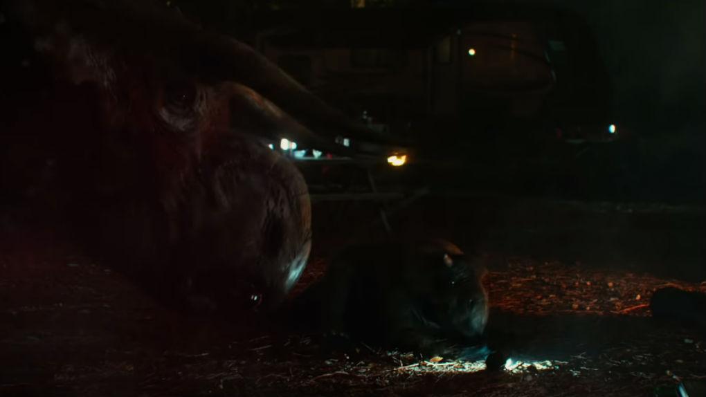 Deux nasutoceratops et leur petit