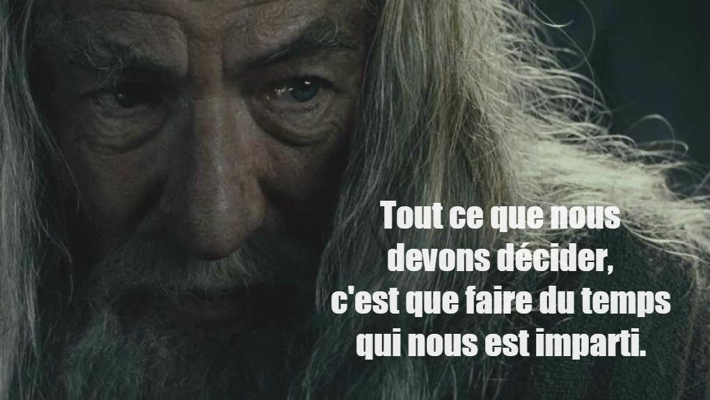 """Gandalf dans """"La Communauté de l'anneau""""..."""