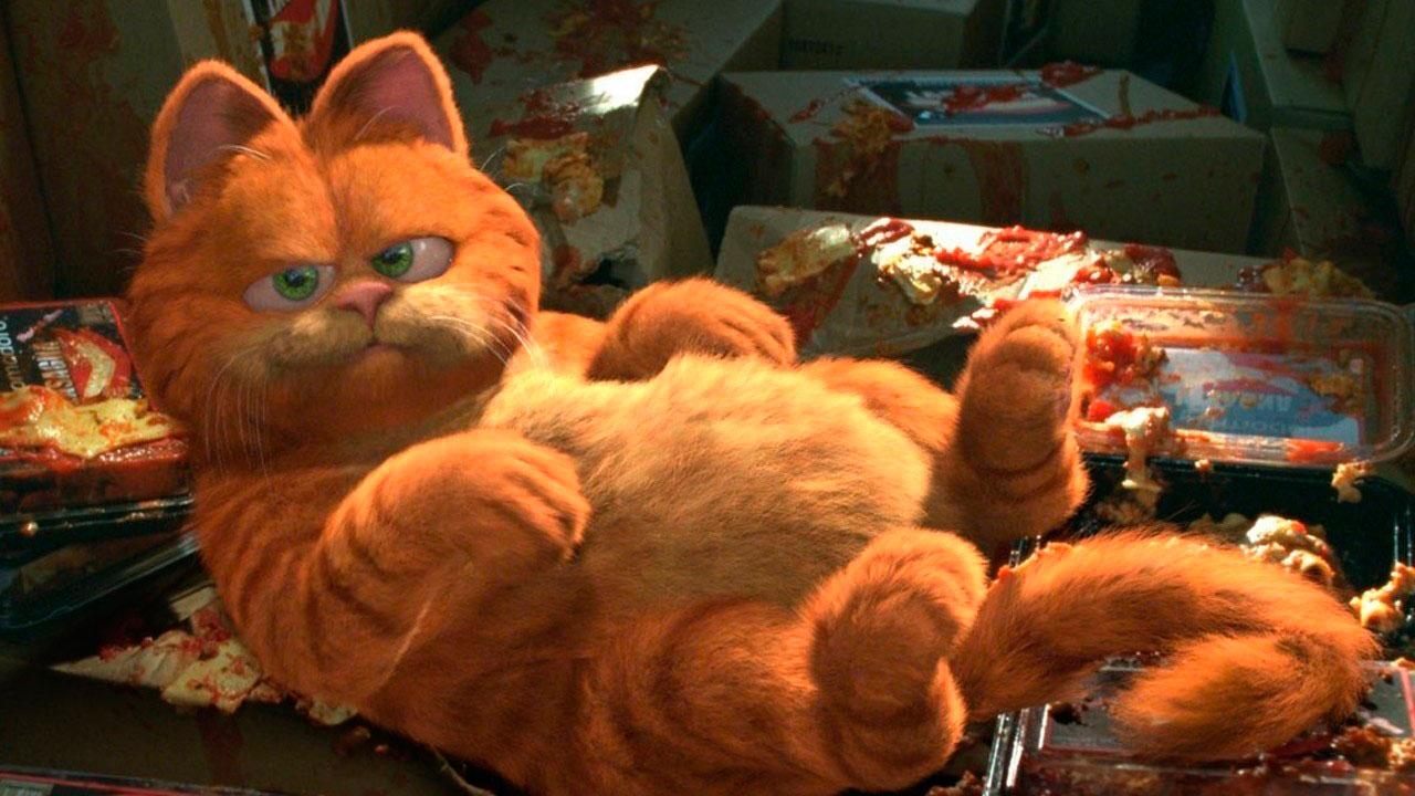 Garfield : Photo