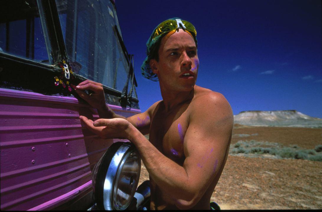 Priscilla, folle du désert : Photo Guy Pearce