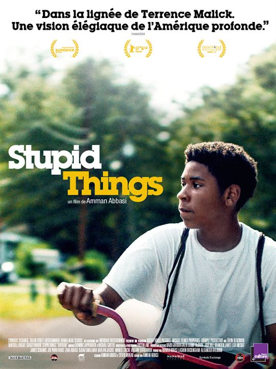 Stupid Things : Affiche