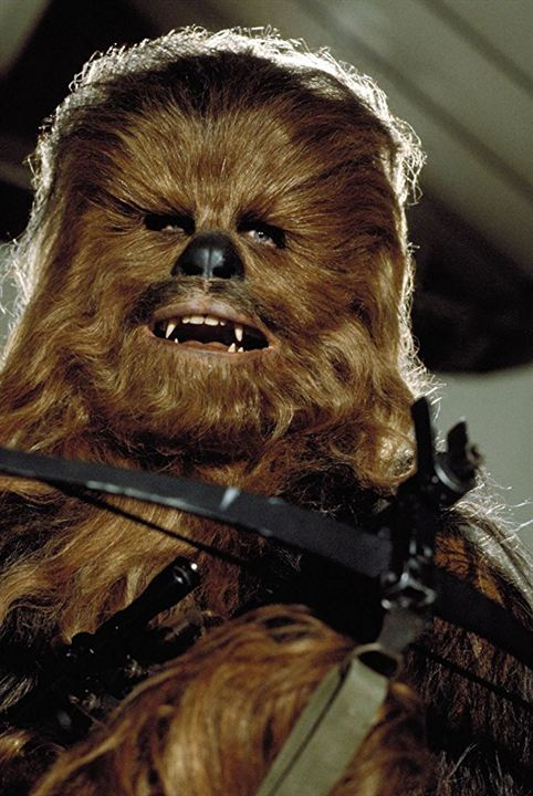 Star Wars : Episode VI - Le Retour du Jedi : Photo