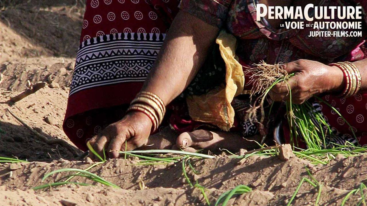 """Résultat de recherche d'images pour """"Permaculture, la voie de l'Autonomie"""""""