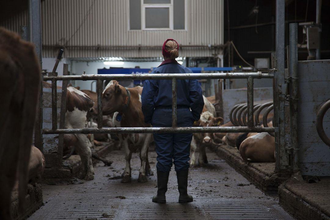 MJÓLK, La guerre du lait : Photo Arndís Hrönn Egilsdóttir