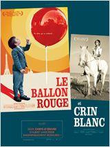 Télécharger Le Ballon rouge Dvdrip fr