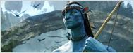 &quot;Avatar&quot;, film le plus pirat&#233; de tous les temps !