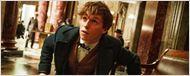 Teaser mystérieux Les Animaux fantastiques : le sorcier Eddie Redmayne dégaine sa baguette magique