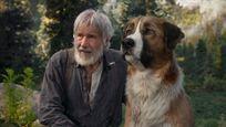 Omar Sy face à Harrison Ford dans la bande-annonce de L'Appel de la forêt