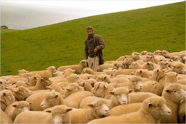 Loin de la foule déchaînée : Photo Matthias Schoenaerts