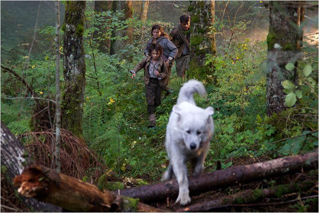 Photo de thierry neuvic dans le film belle et s bastien l 39 aventure cont - Thylane blondeau taille ...