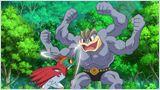 Pokémon - Le héros de la forêt !