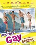 Affiche du film Another Gay Sequel: Gays Gone Wild!