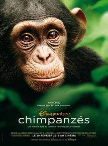 Bande-annonce Chimpanzés