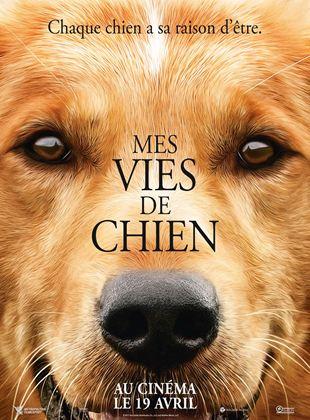 Bande-annonce Mes vies de chien