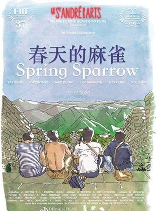 Spring Sparrow streaming