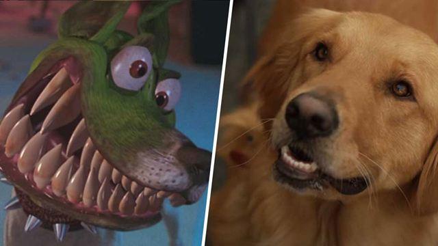 QUIZ A quels films appartiennent ces chiens ?