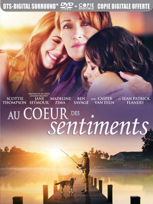 Télécharger Au coeur des sentiments HDLight 1080p Complet Uploaded