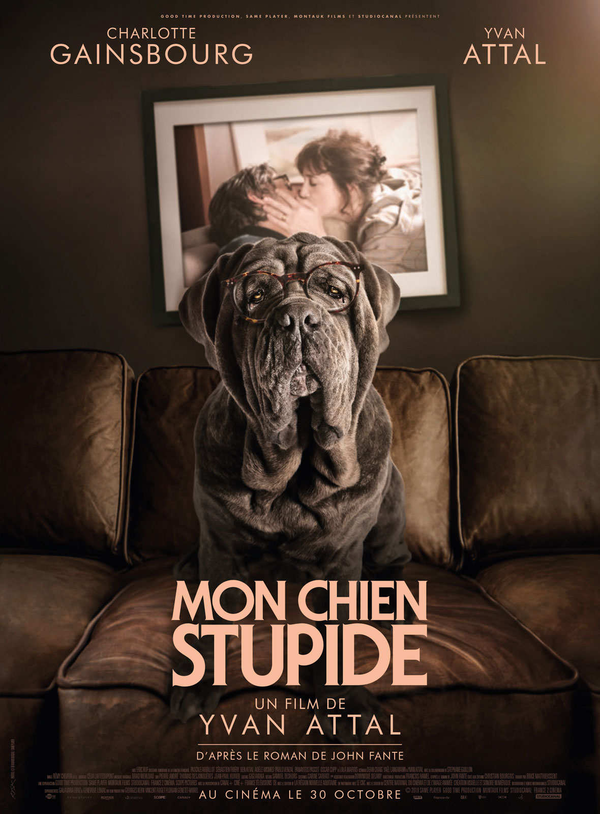 Mon chien Stupide streaming