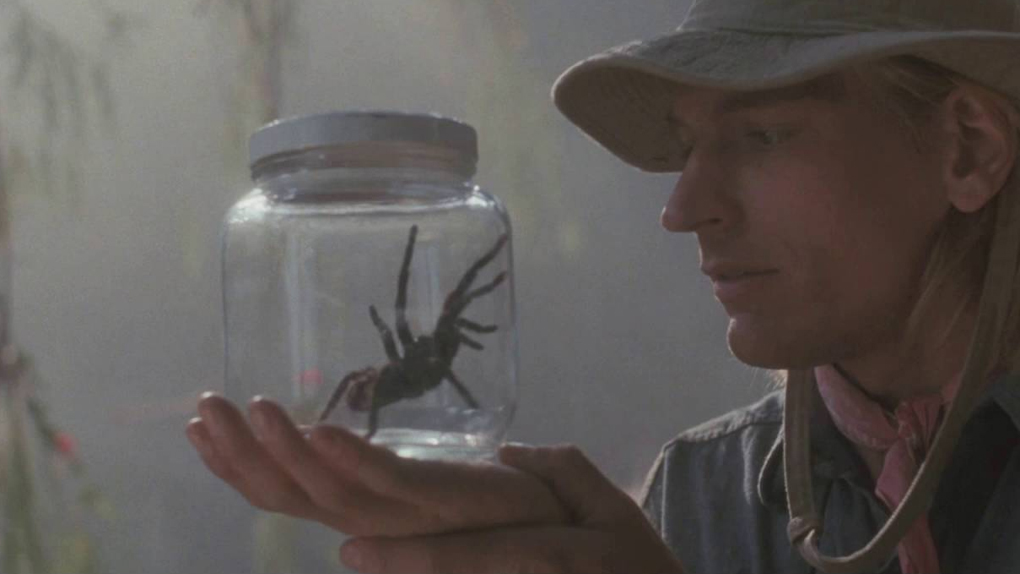 Arachnophobie - film du même nom