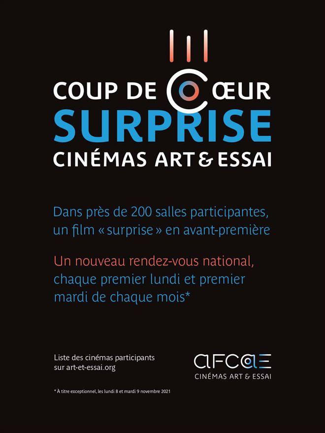 Coup de coeur surprise 1 AFCAE Novembre 2021